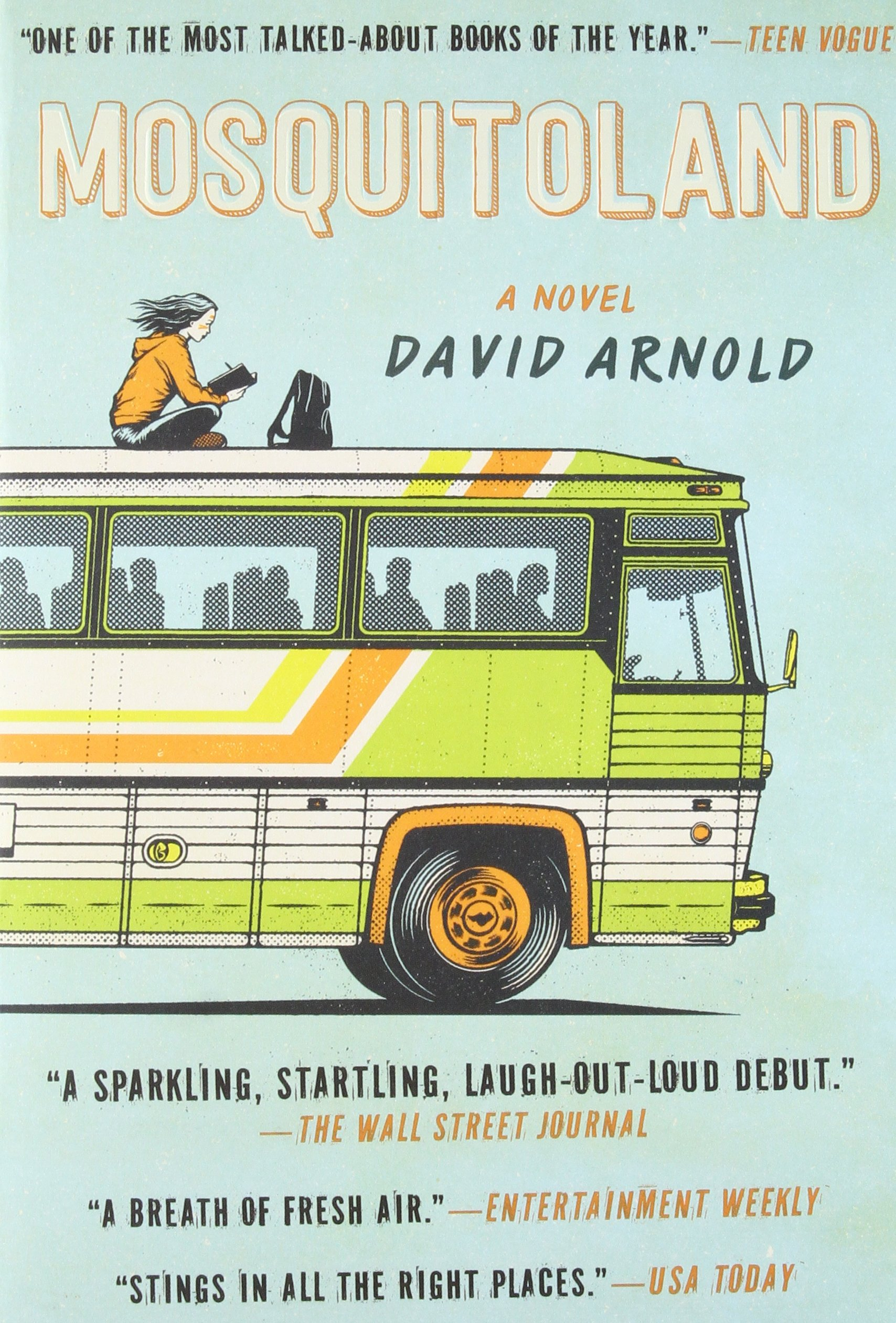 Image result for mosquitoland book