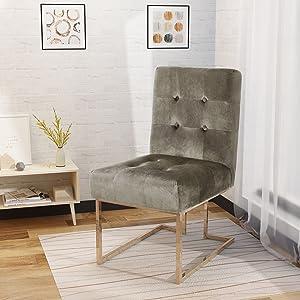 Christopher Knight Home Baron Modern Velvet Accent Chair, Grey