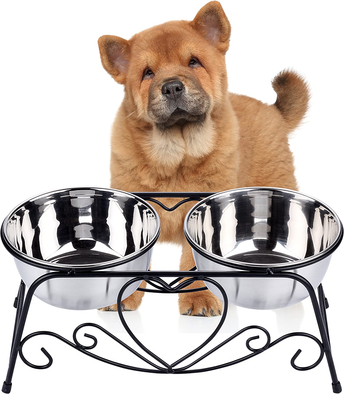 CICO Pet Feeder for Dog Cat, Stainless Steel Food and Water Bowls with Iron Stand