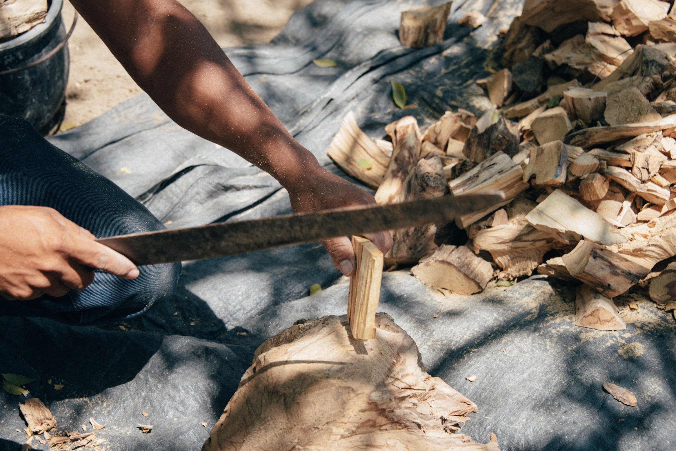 Luna Sundara Palo Santo from Perú Smudging Sticks Large Chunks, High Resin 1 Pound Bag. by Luna Sundara (Image #4)