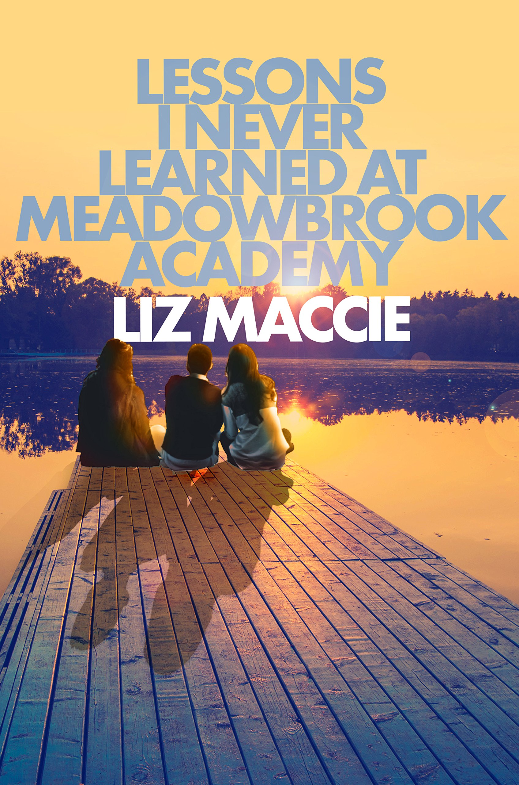 Lessons I Never Learned at Meadowbrook Academy pdf