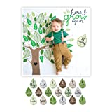 Amazon Price History for:lulujo Baby First Year Milestone Blanket and Cards Set, Here I Grow Again
