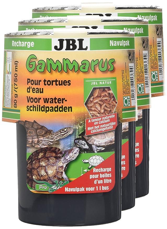 JBL Gammarus Recharge Nourriture pour Tortue Aquariophilie