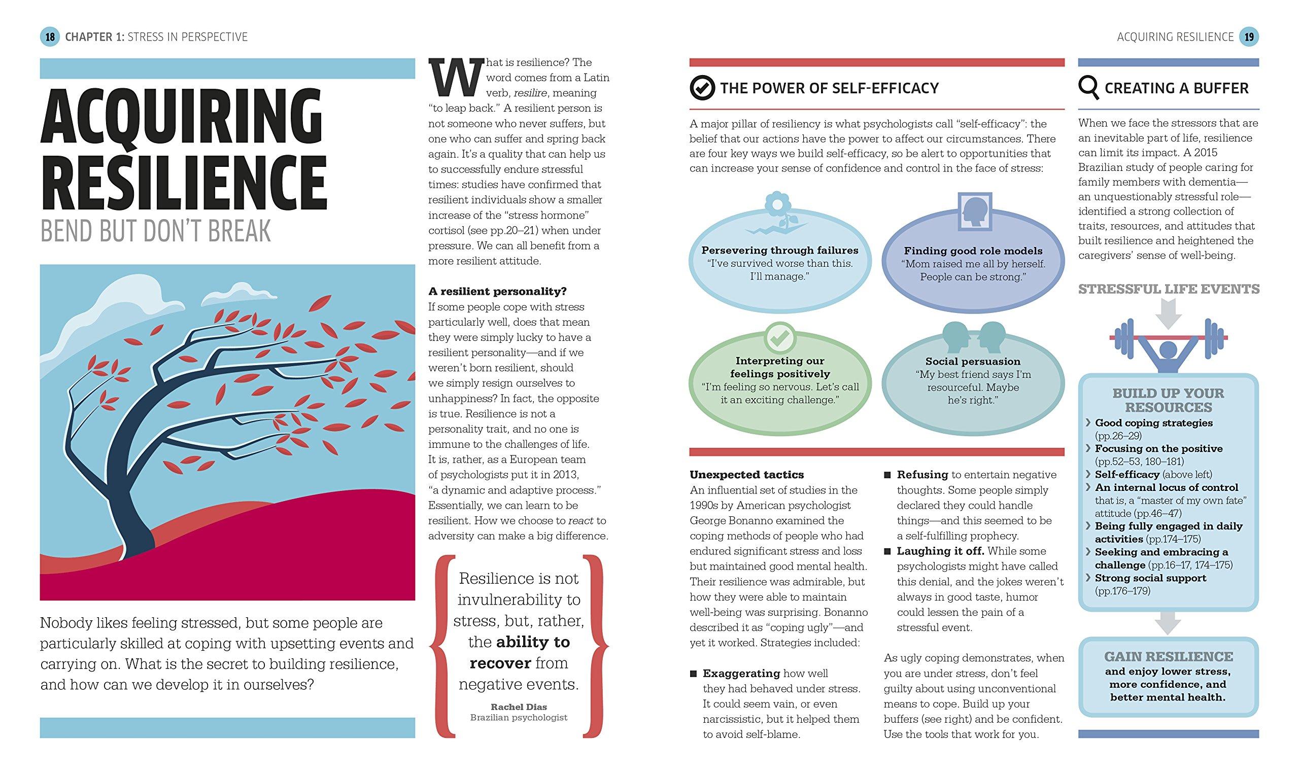 08f4b2dc0a33e Stress: The Psychology of Managing Pressure: Amazon.co.uk: DK:  9781465464309: Books