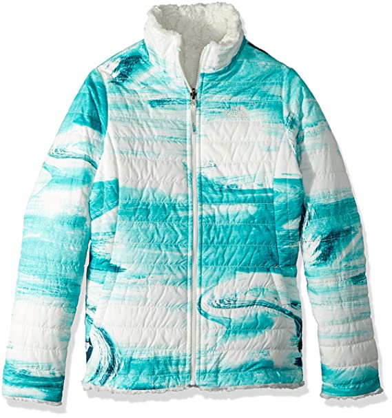 1d7aa3f03 The North Face Girls' Reversible Mossbud Swirl Jacket (Little Big Kids)