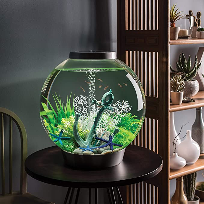 biorb fish tank reviews