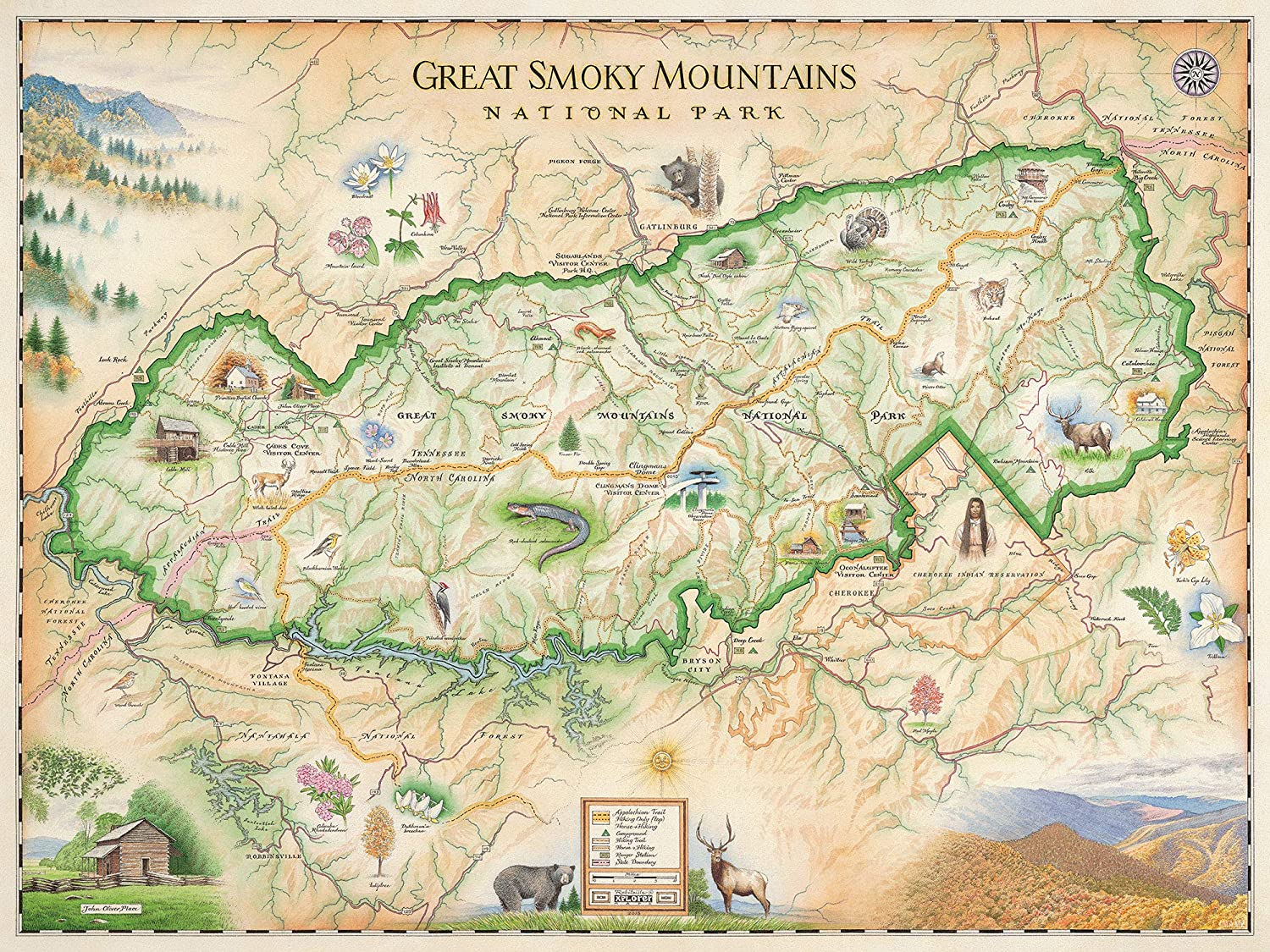 Great Smoky Mountains Map Amazon.com: Xplorer Maps Great Smoky Mountain National Park Map