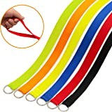 DCSUIT Slip Leads Dog Leash Pet Rope - 6 FT Strong Pulling Durable Leashes with O-Ring,6 Colors Soft Strap for Puppy/Doggie,Easy Control for Grooming/Shelter/Rescues/Walking/Training,etc.