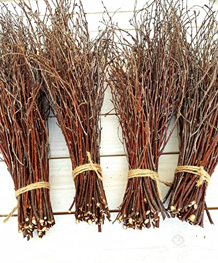 200 Pcs Birch Branches Natural Birch Twigs Birch Branches Centerpieces Decorative Birch Birch Branches For Crafts Set Of 4 Bundles
