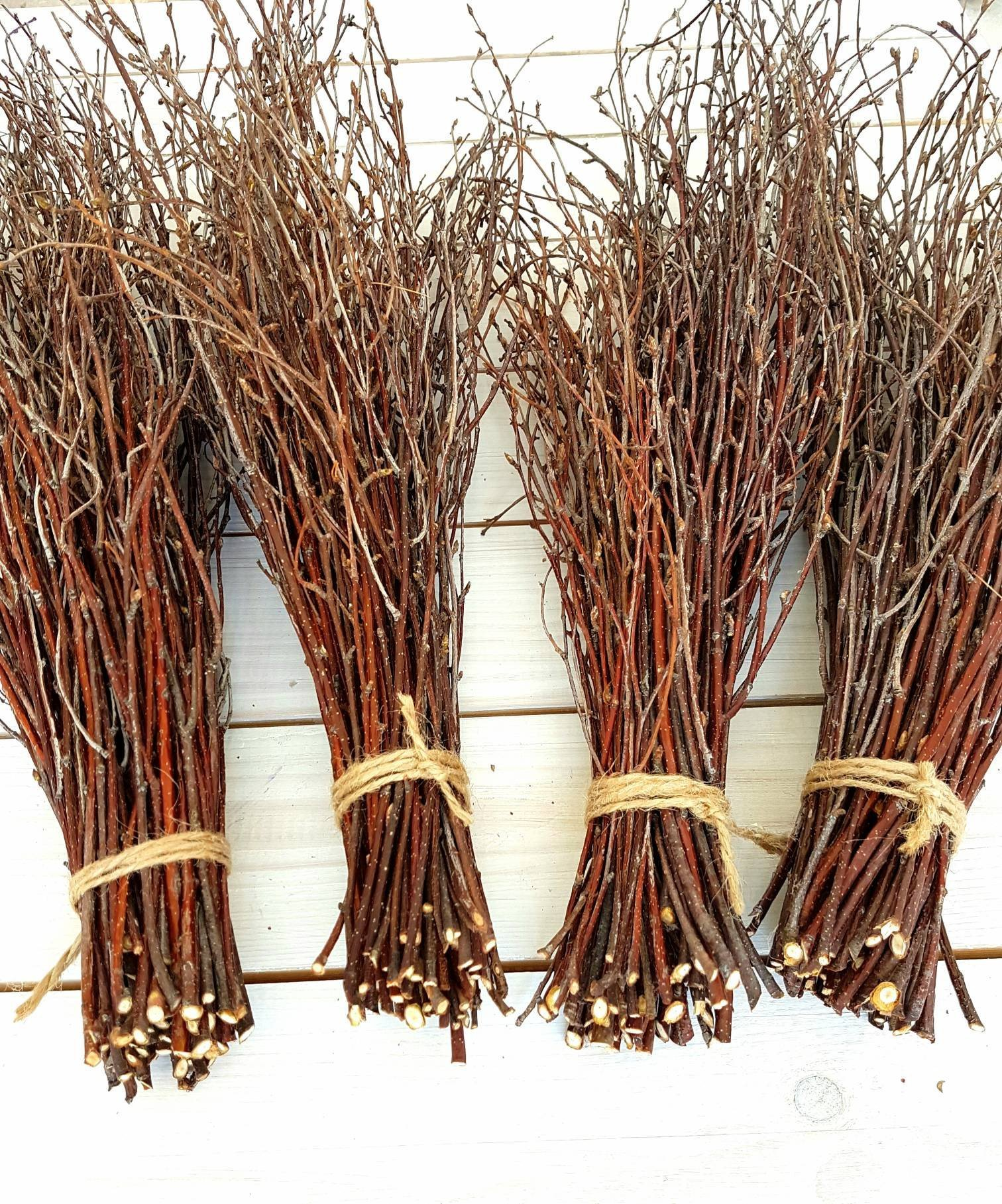 200 pcs. Birch Branches, Natural Birch Twigs, Birch Branches centerpieces, Decorative Birch, Birch Branches for Crafts, Set of 4 Bundles