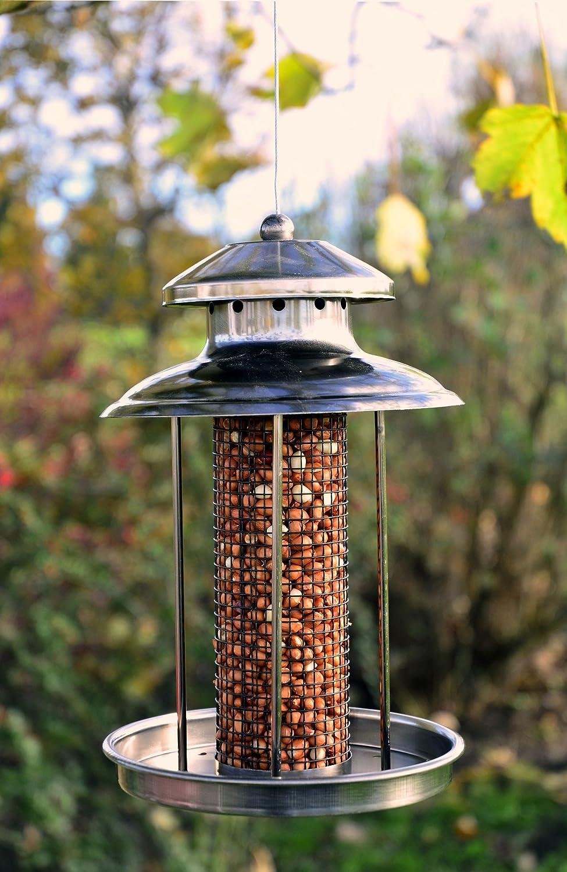 V gel im winter die erschwerte futtersuche f r einheimische v gel - Vogelfutterspender selber bauen ...