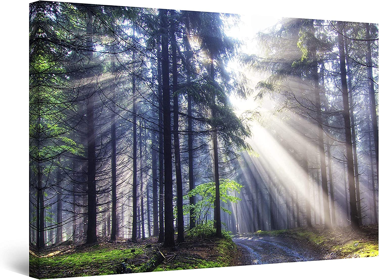 Startonight Canvas Wall Art - Light in The Forest Nature, Framed 32 x 48 Inches