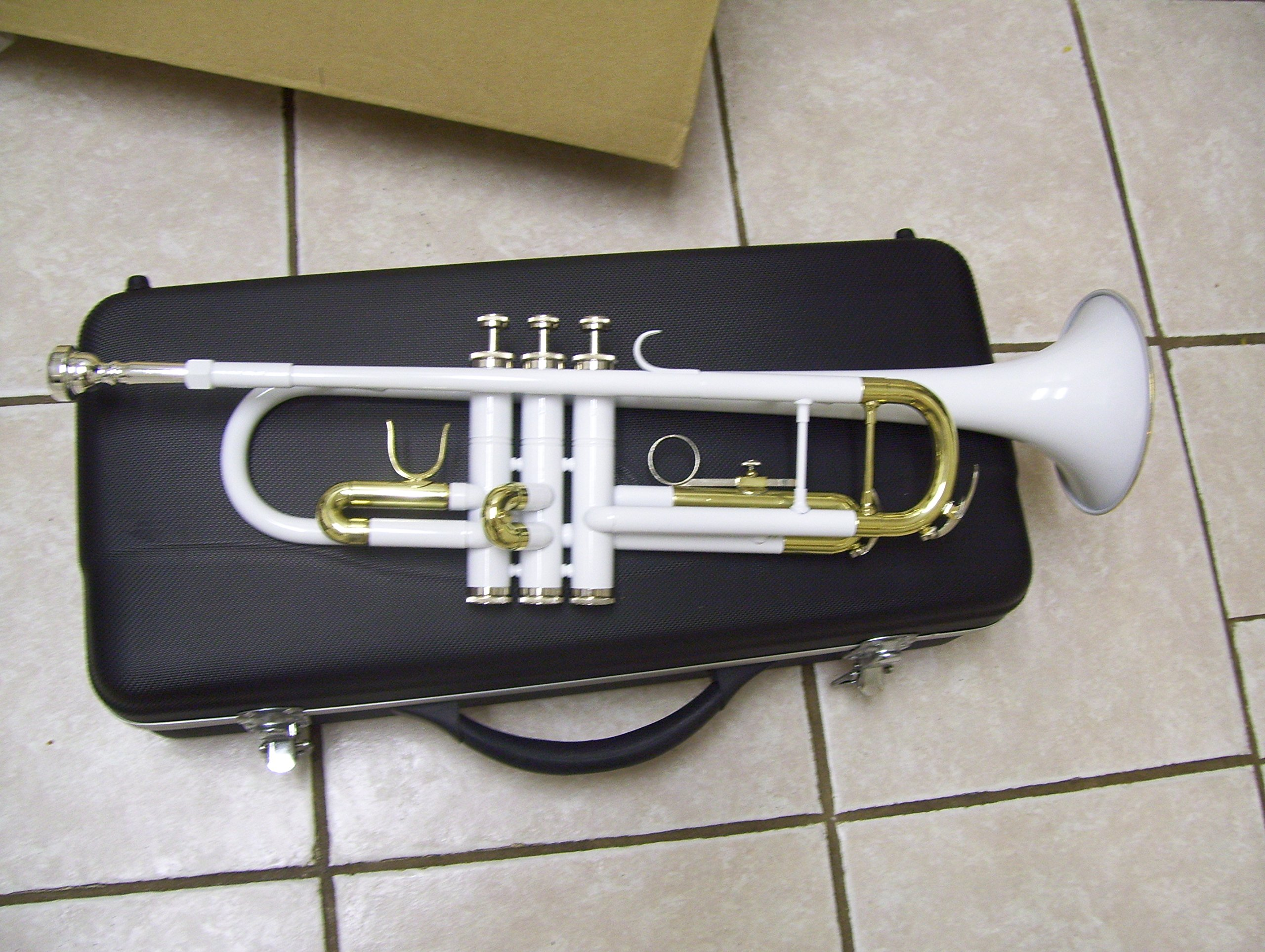 White Trumpet with hard case and mouthpiece by Maestro