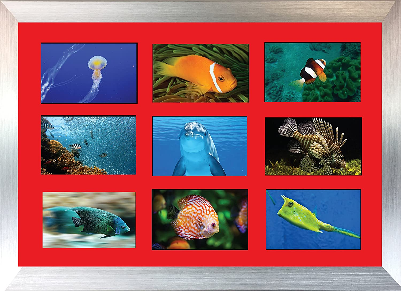 Amazon.de: Kwik Picture Framing Ltd Große Multi Bilderrahmen Blende ...
