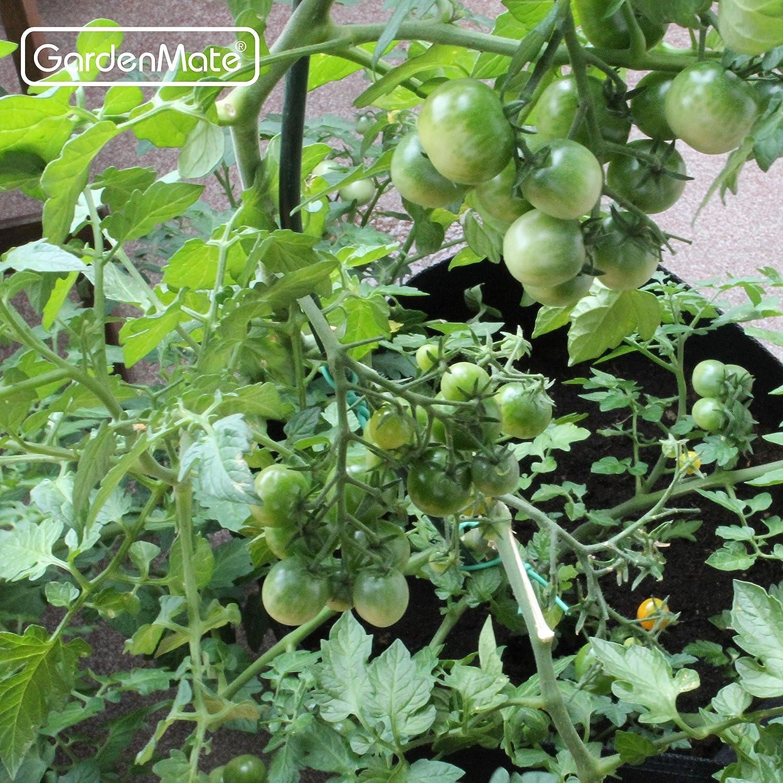 GardenMate 5X 30L Bolsas para Plantas Blackline - Altura 30 cm Ø ...