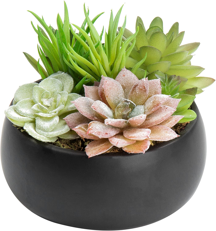 MyGift Mini Artificial Succulent Arrangement in Black Ceramic Planter Bowl (Assortment 3)