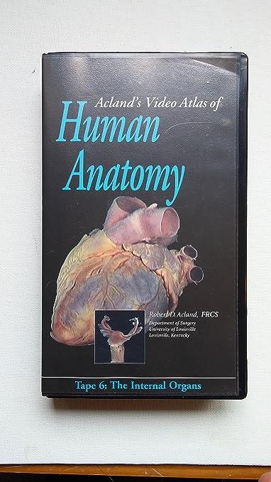 Amazon Aclands Video Atlas Of Human Anatomy The Internal