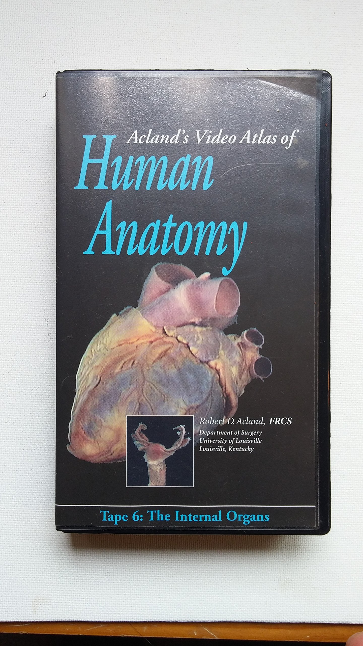 Buy Aclands Video Atlas Of Human Anatomy Tape 6 The Internal