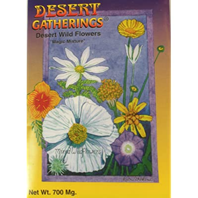 Desert Wild Flowers Seeds – Plant Your Own Garden – Brittlebush, Marigold, Mexican Poppy, Chuparosa, Fairy Duster, Owls Clover, Desert Lupine, Prickly Poppy, and Penstemon : Desert Wildflower Seeds : Garden & Outdoor