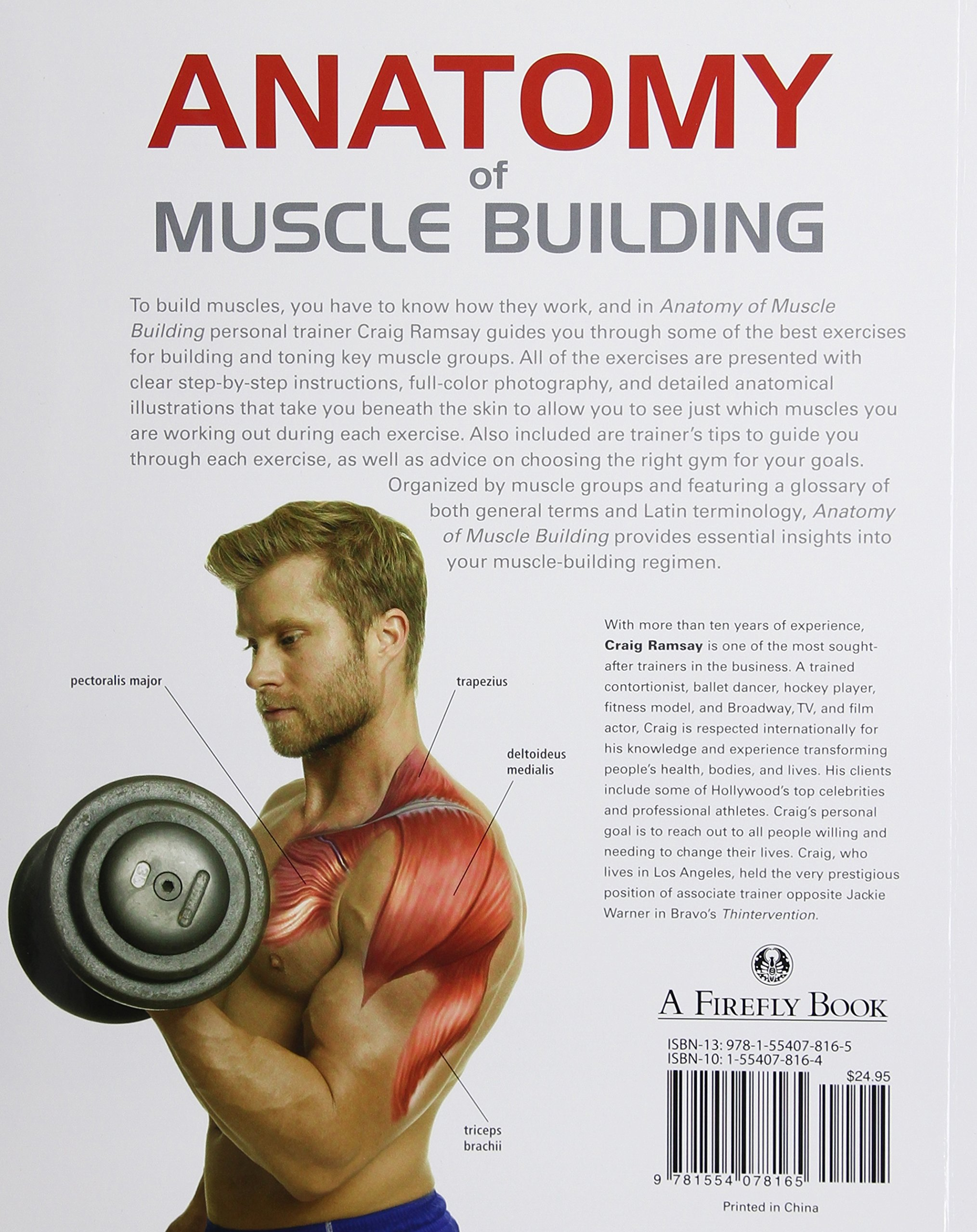 Anatomy of Muscle Building: A Trainer\'s Guide to Increasing Muscle ...
