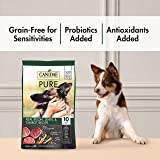 CANIDAE PURE Real Bison, Limited
