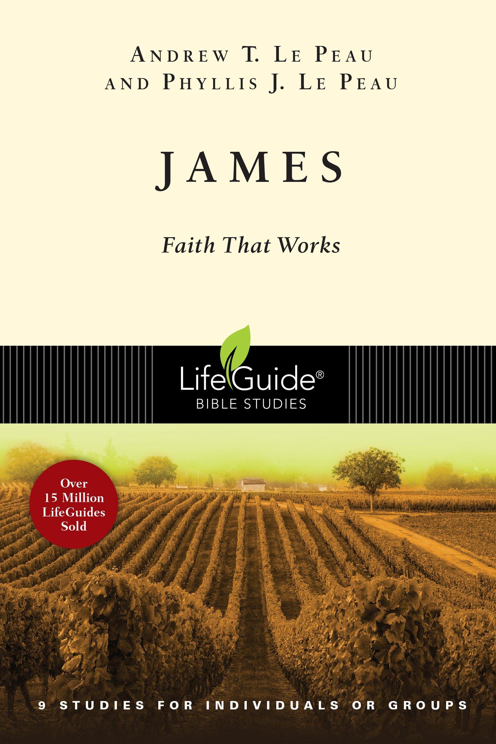 James Faith Works Lifeguide Studies product image