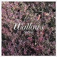 Spring EP (Explicit)(Pink & Green Vinyl w/Digital Download)