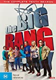 Big Bang Theory, The: S10