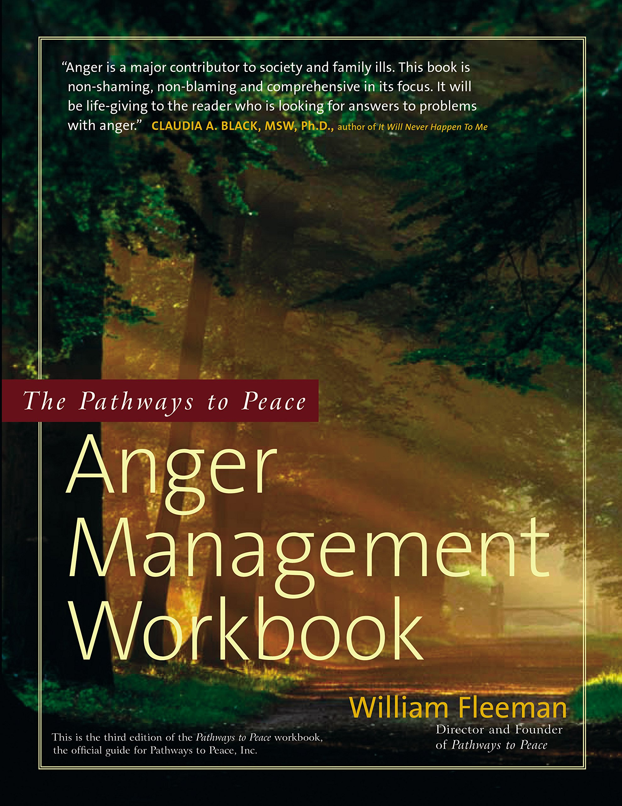 Download The Pathways to Peace Anger Management Workbook pdf epub