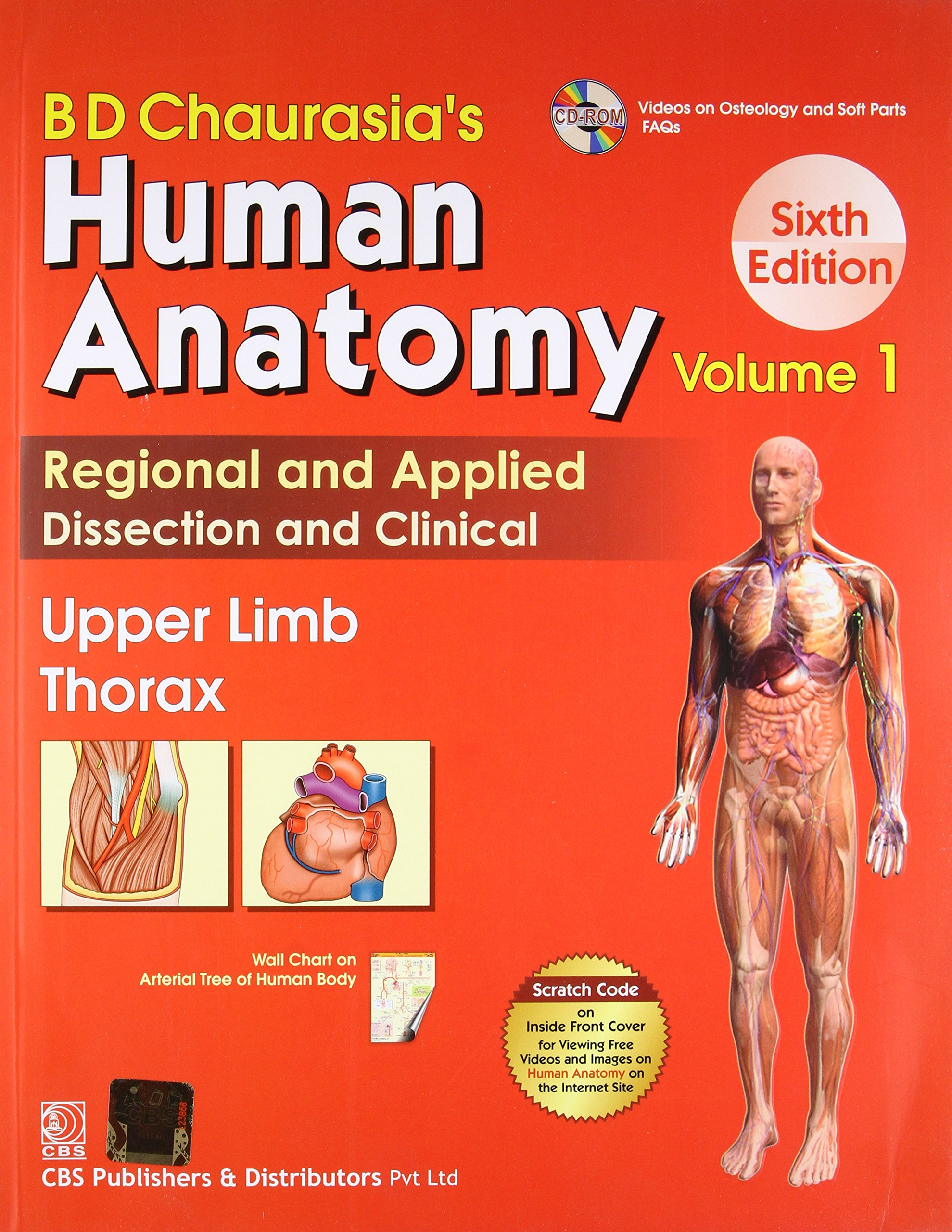 Buy BD Chaurasia\'s Human Anatomy: Vol. 1: Upper Limb Thorax Book ...
