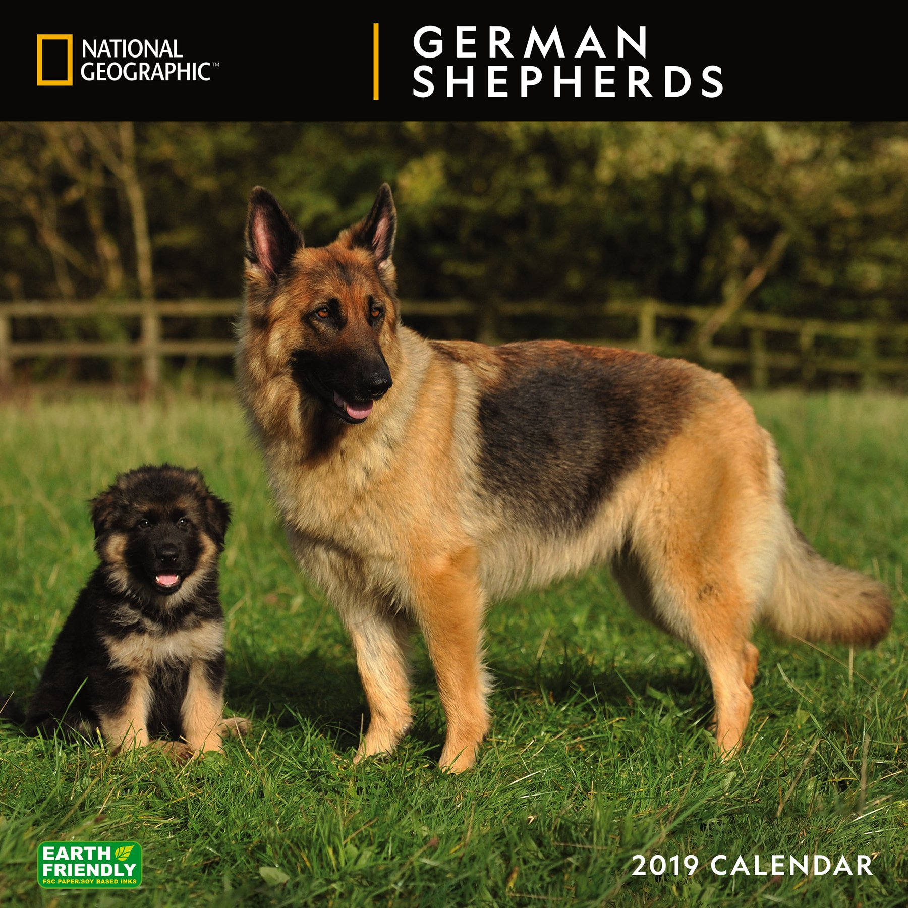 national geographic german shepherds 2019 wall calendar
