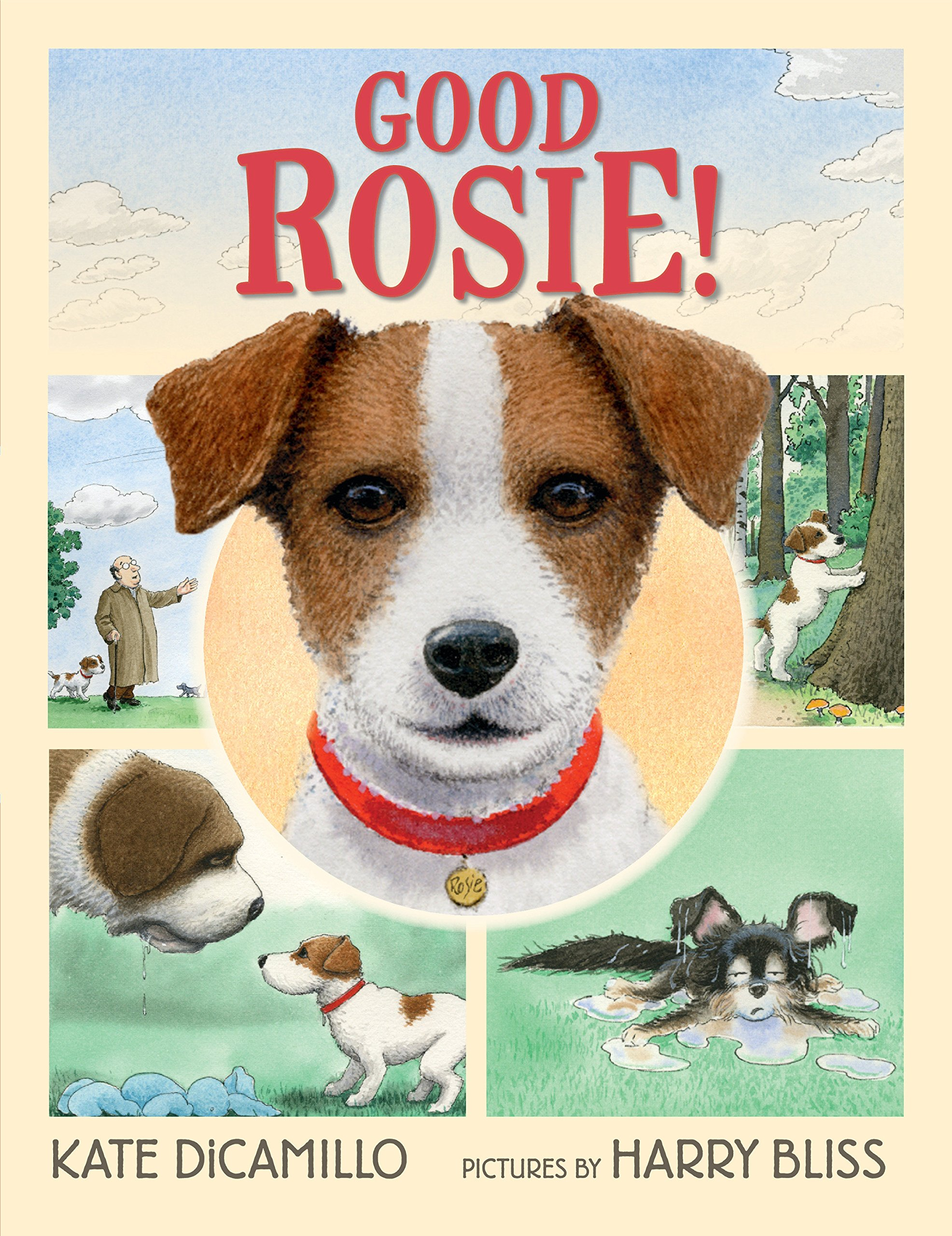 Image result for good rosie amazon