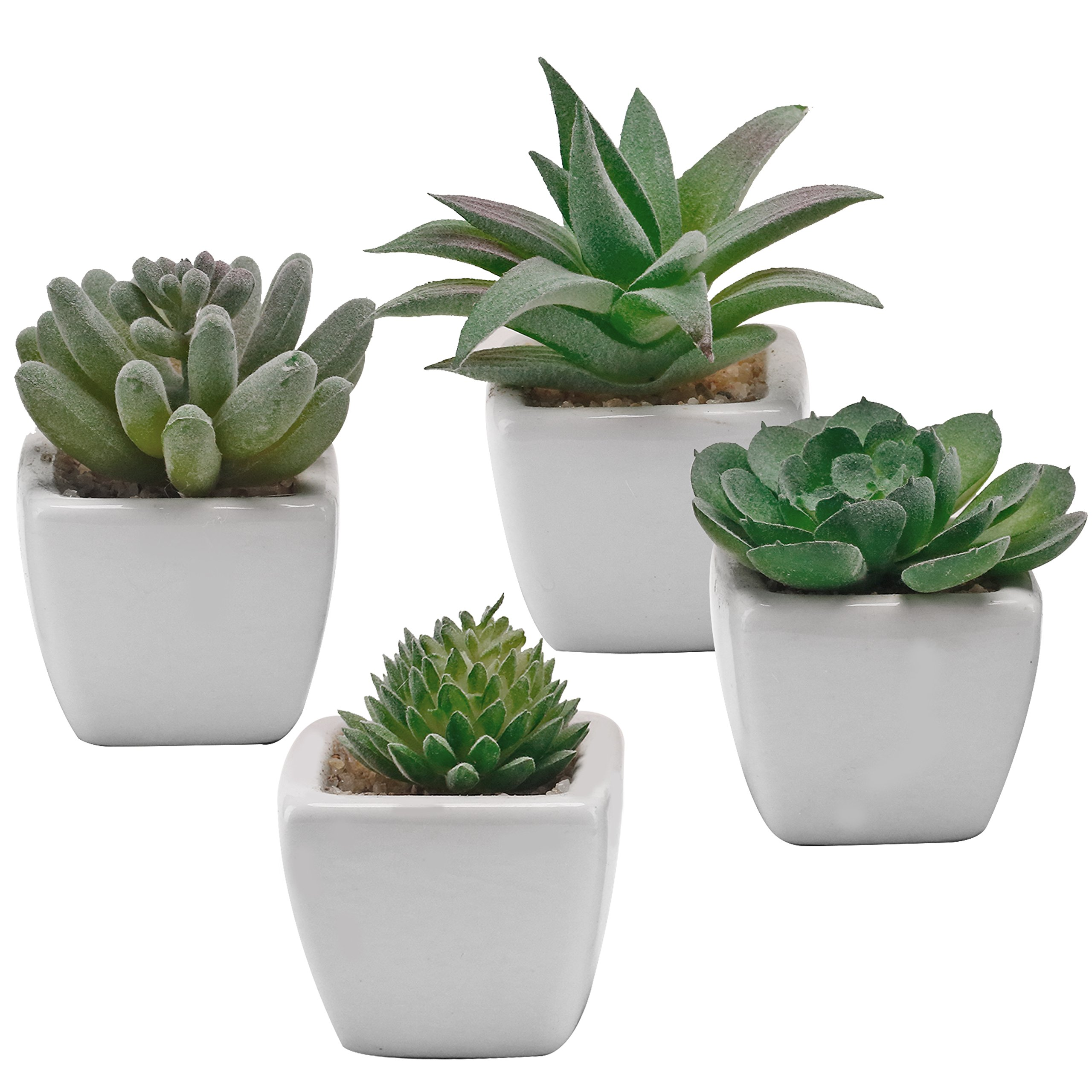 Miniature Mixed Artificial Succulent Plants in Square White Ceramic Planter Pots, Set of 4 by MyGift
