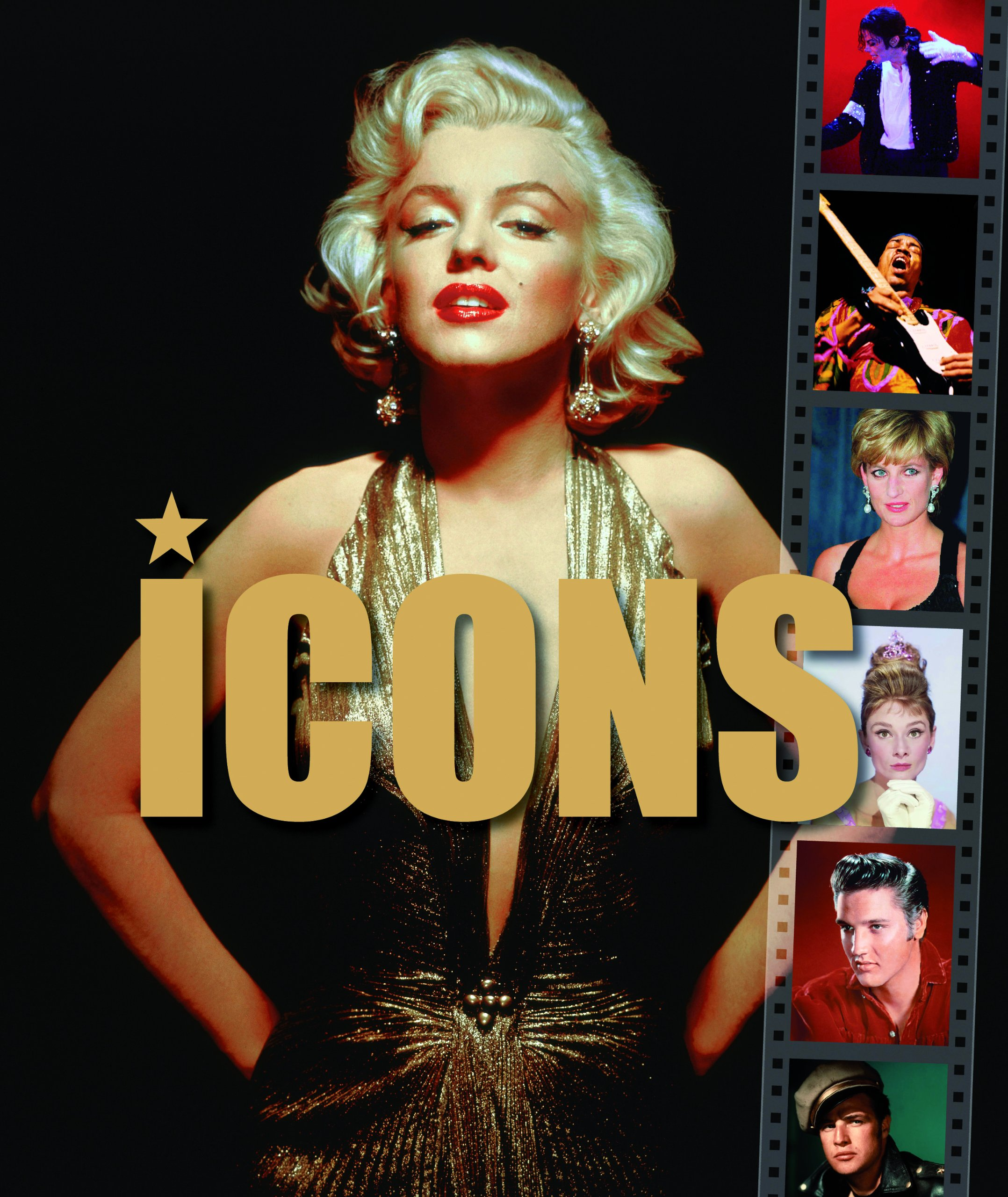 Download Icons (Focus on Series) pdf