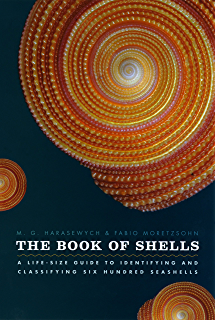Floridas seashells a beachcombers guide 2 blair witherington the book of shells a life size guide to identifying and classifying six hundred fandeluxe Choice Image