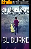 St James Gate: A Brew City Revenge Thriller (A James Webb Novel Book 1)