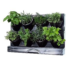 Watex Countertop Garden Kit, (Black) , Indoor Garden