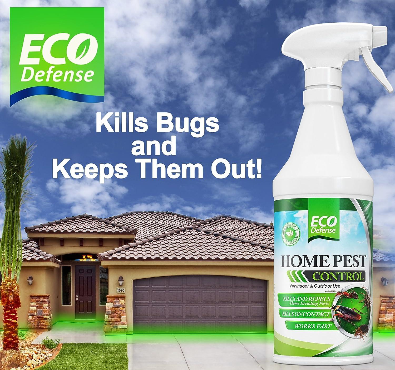 Amazon.com : Eco Defense Organic Home Pest Control Spray (16 oz ...