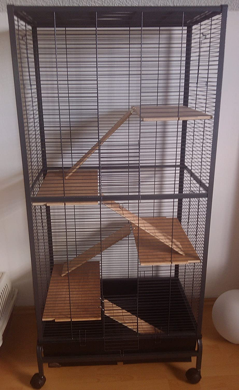 Montana Cages voliere adolescente, jaula para roedores Malaga II ...