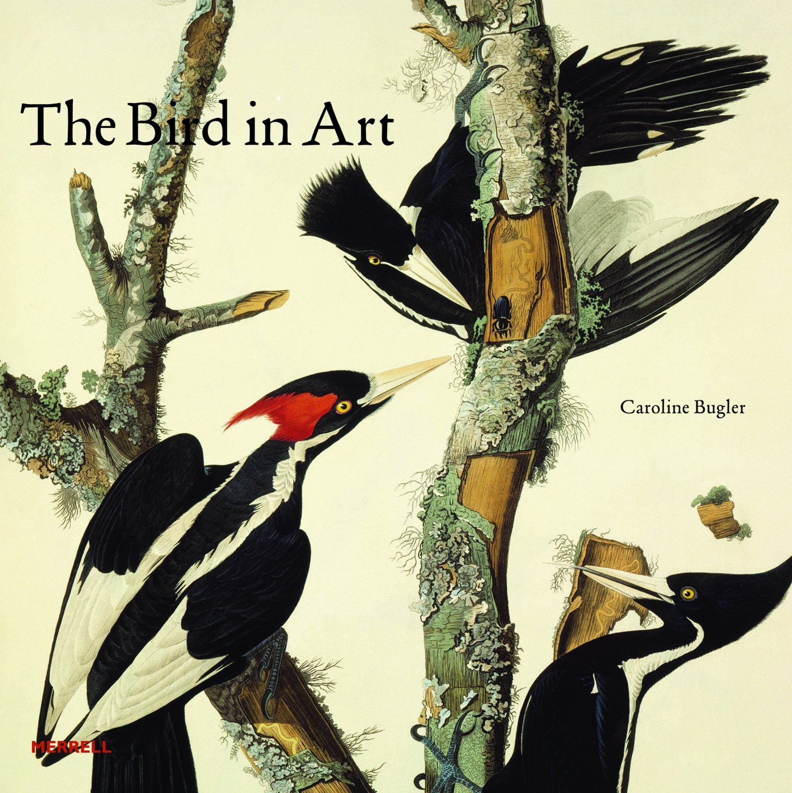 The Bird In Art Caroline Bugler 9781858945682 Amazon Books