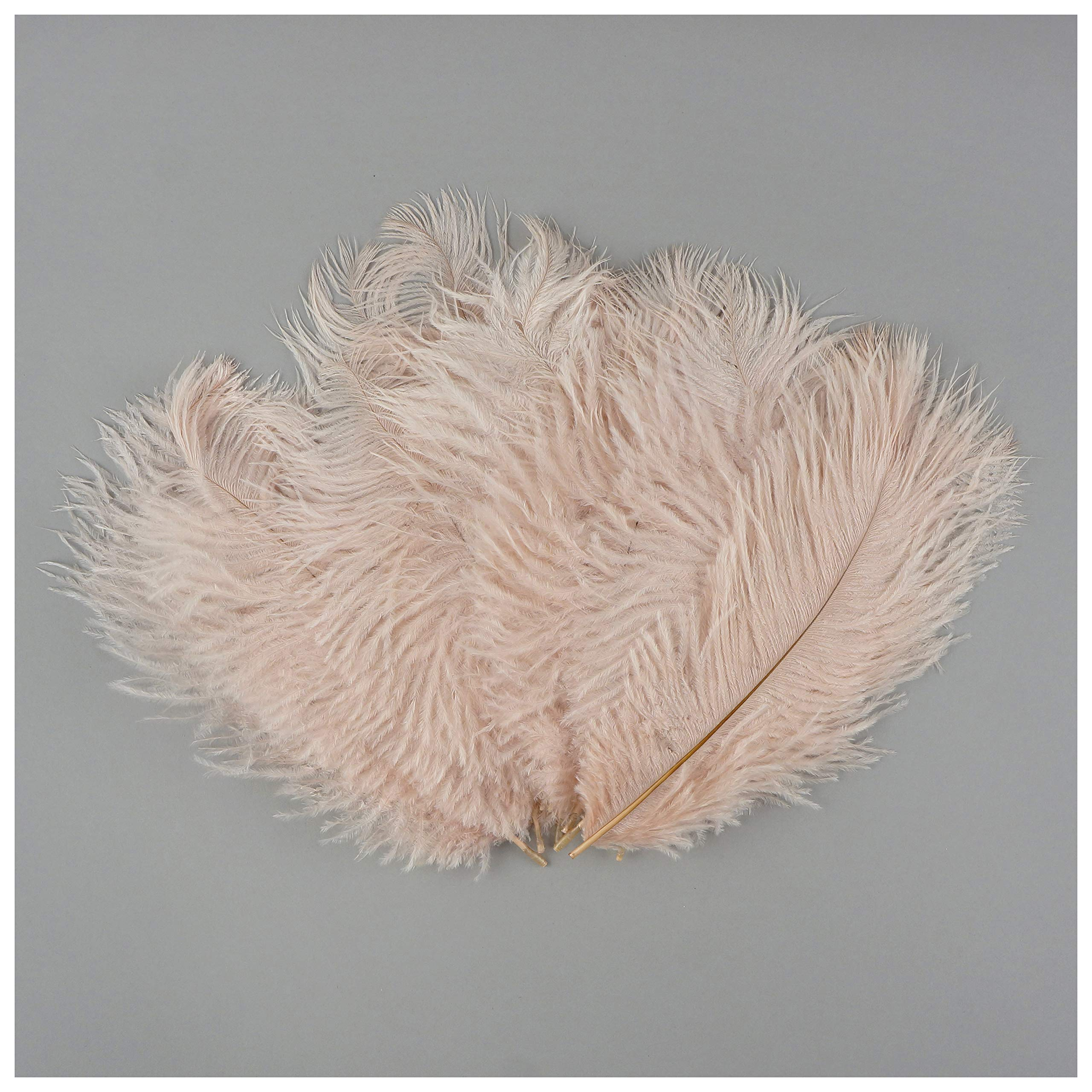 ZUCKER Bulk Feathers | Ostrich Feather Craft Supplies | DIY Wedding Decor | Bulk Ostrich Feathers for Party Decoration, 4-8 inch, Champagne, 1/4 lb (Approx 200 Pieces)