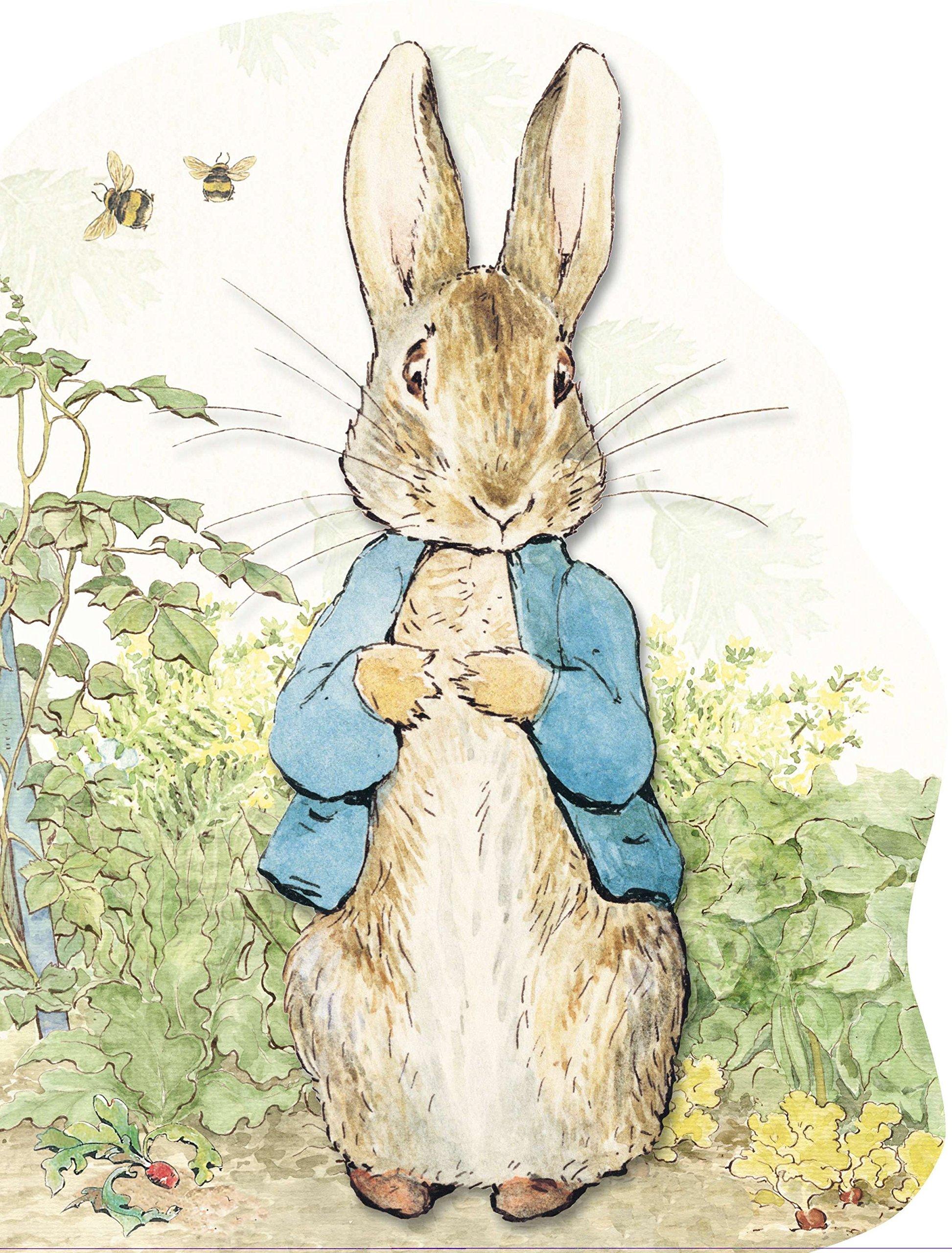Peter Rabbit Large Shaped Board Book: Potter, Beatrix: 9780723259565: Amazon.com: Books