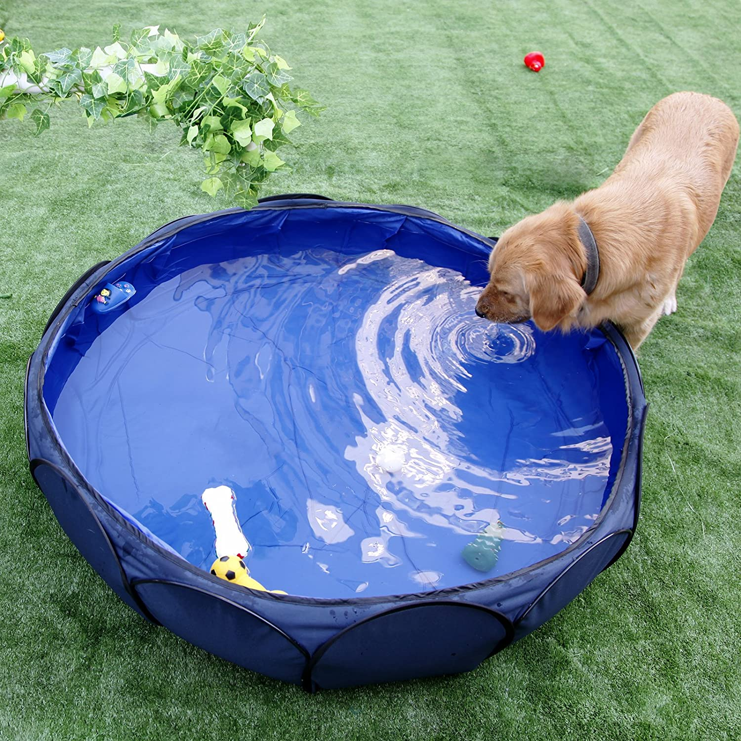 """Great Pop-Up pool: Petsfit 41"""" Foldable and Portable Pet Swimming Pool"""