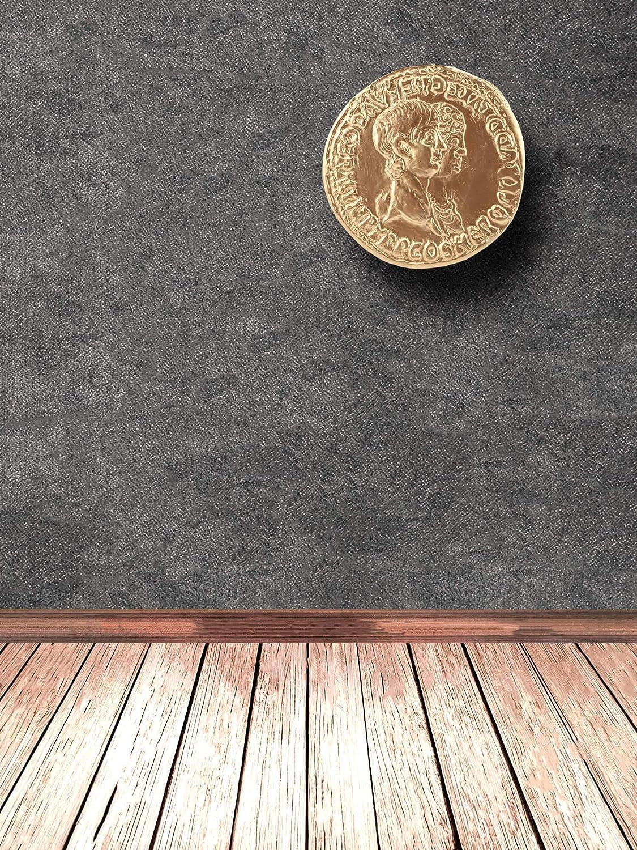 antike r/ömische Wanddeko Das antike Rom Arch/äologische Museum Replik Forum Traiani Relief Nero//Agrippina altr/ömische Goldm/ünze vergr/ö/ßertes Replikat