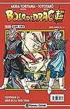 Bola de Drac Serie Vermella nº 228 (vol 4) (Manga Shonen)