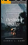 Destiny's Bridge: Book One in the Somerville Series, Featuring Lex & Amanda
