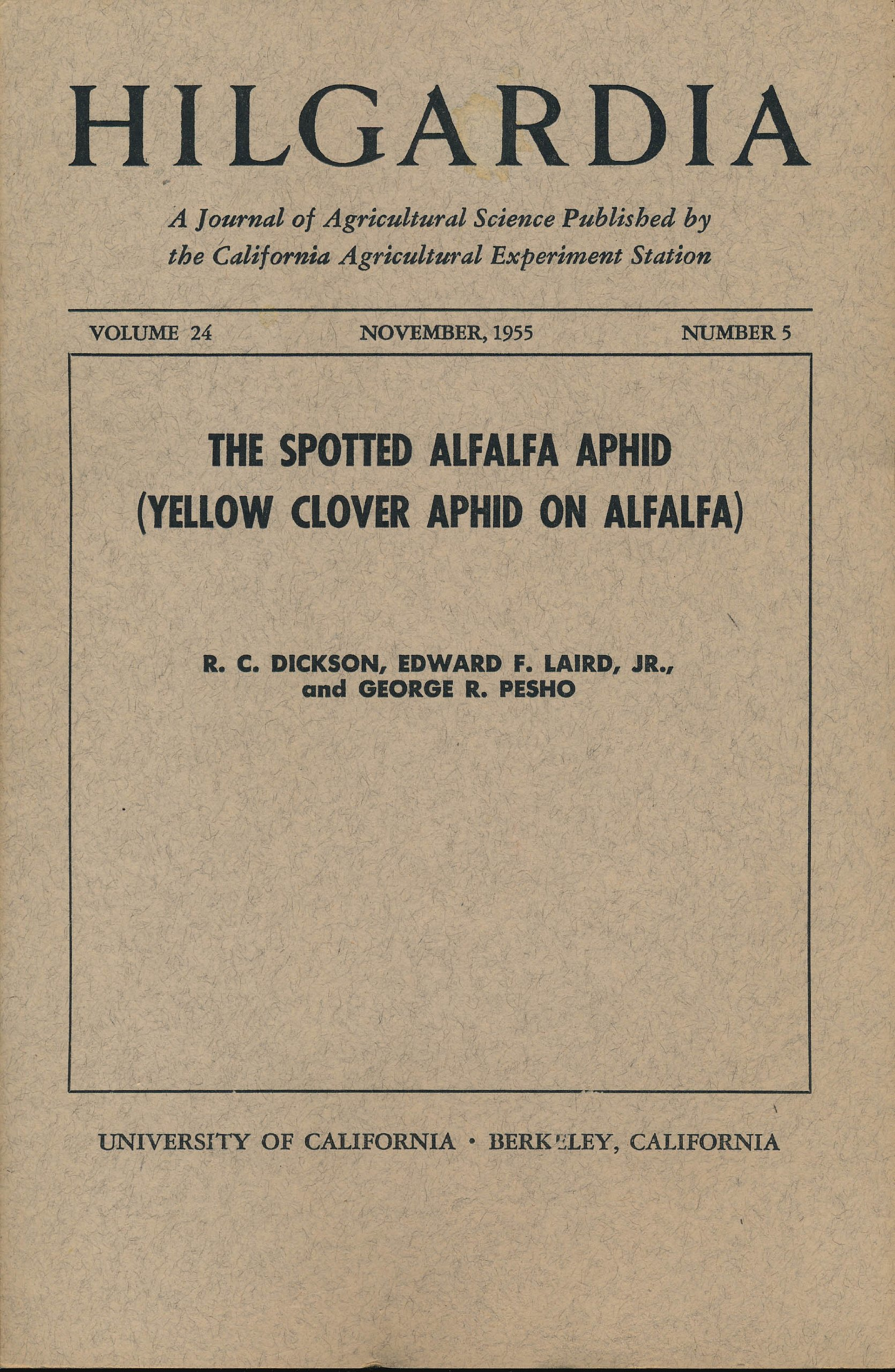 The Spotted Alfalfa Aphid (Yellow Clover Aphid on Alfalfa