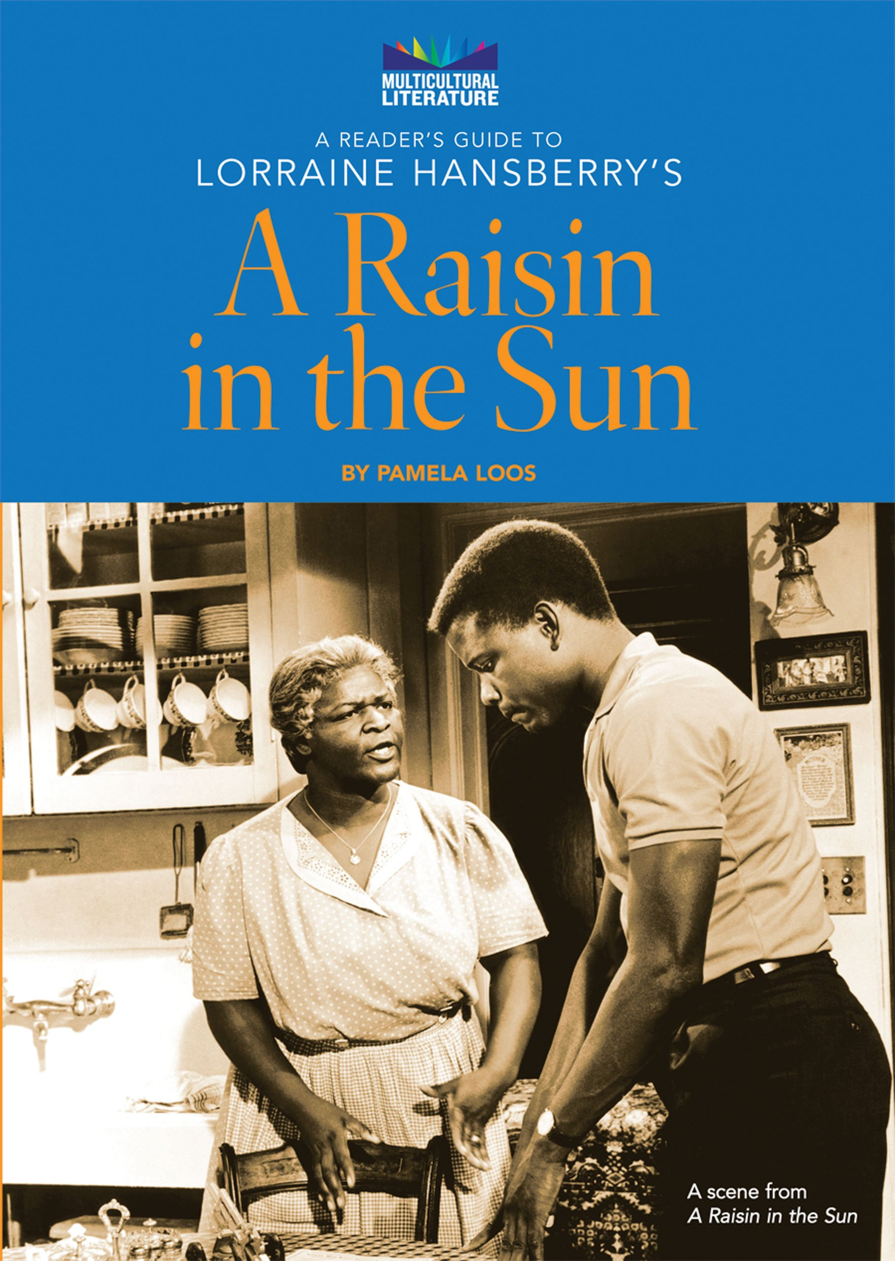 a raisin in the sun movie 2008 online