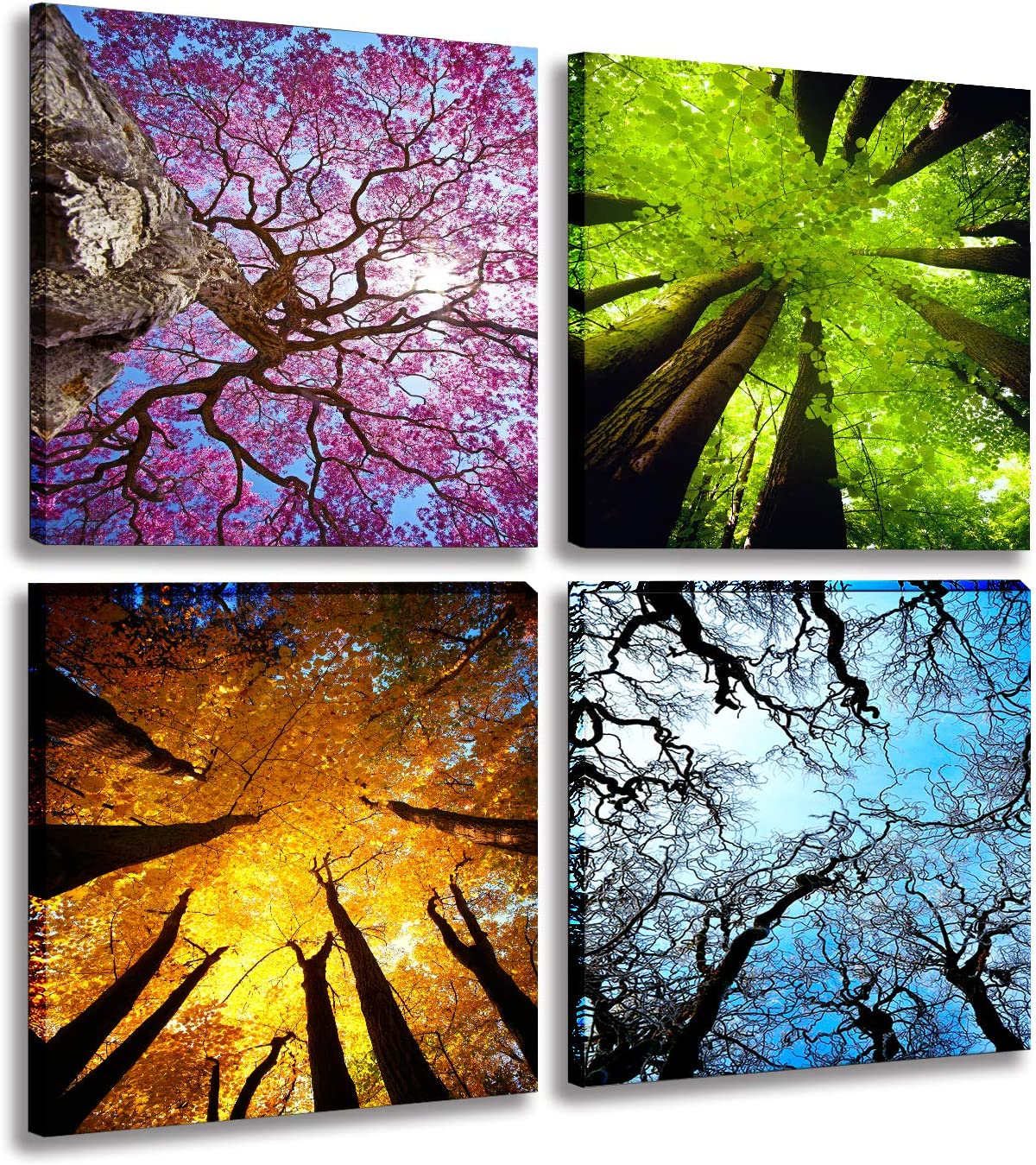4 Panels Canvas Wall Art Spring Summer Autumn Winter Four Seasons Landscape Color Tree Painting Picture Prints Modern Giclee Artwork Stretched And Framed For Homel Decoration 30x30cmx4pcs Amazon Ca Home Kitchen