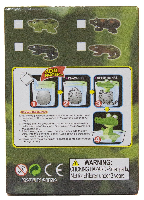 Amazon com fun stuff grow an alligator alligator egg hatching pet just add water toys games